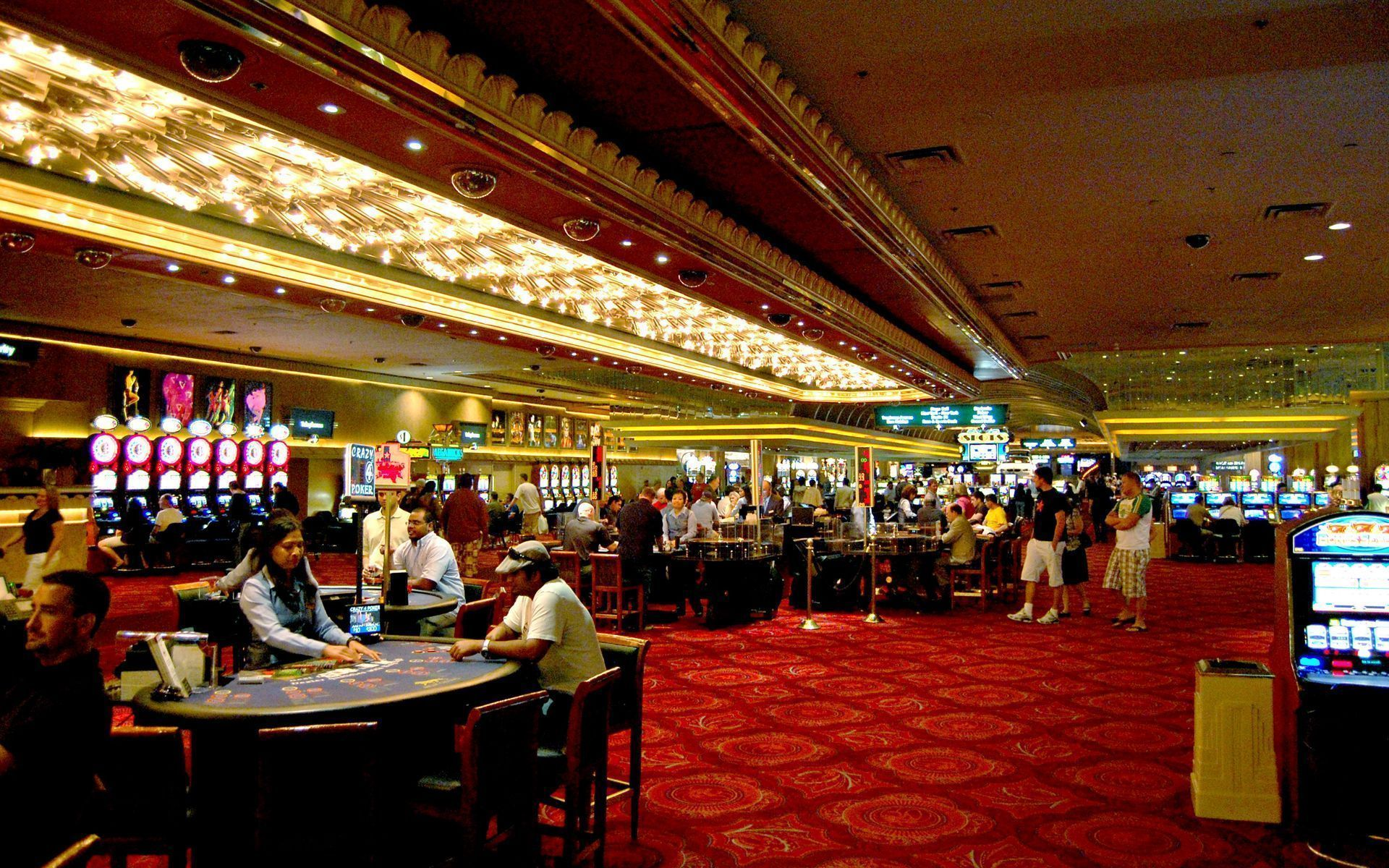 Whether You are An Skilled in Online Casino